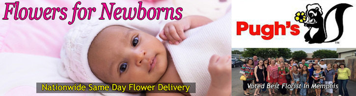 Flowers For Newborns
