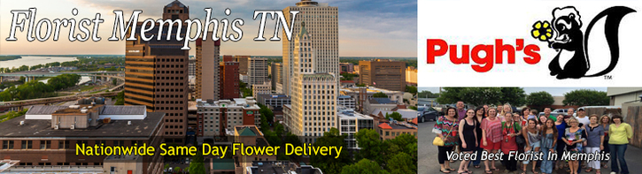 Memphis Flower Shop Florist Memphis Tn Pughs Flowers