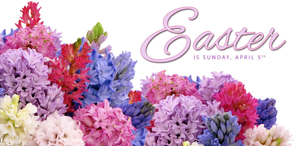 Flower delivery for Easter in Memphis