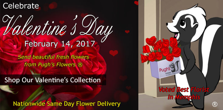 Shop at Pugh's Flowers for beautiful Valentine's Flowers, Plants and Gifts.