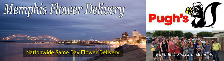 Memphis Tennessee Flower Delivery Pugh S Flowers