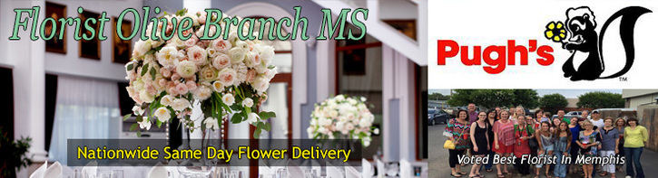 Olive Branch Flower Shop