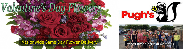 Valentine's Day Flowers